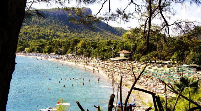 Antalya' daki Bitki Örtüsü