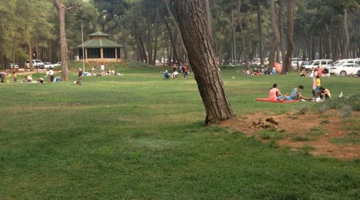 Düzlerçamı Piknik Alanı