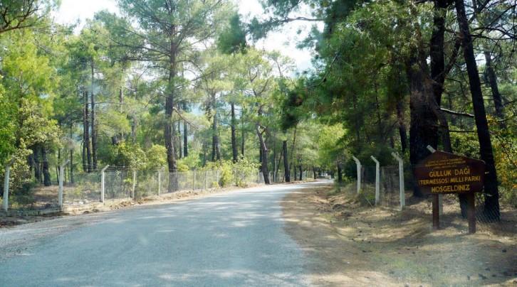 Güllük Dağı ( Termessos ) Milli Parkı