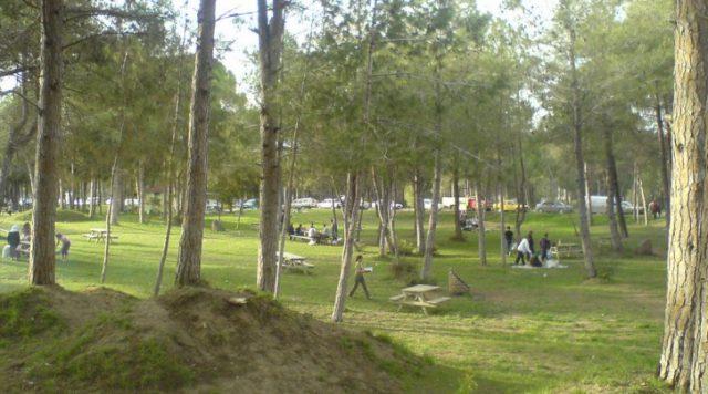 Kadriye Beach Piknik Alanı