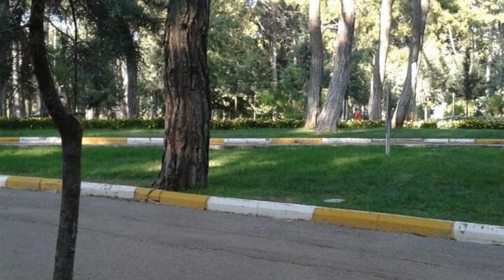 Kepez Belediyesi Sosyal Tesisleri Piknik Alanı