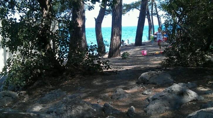 Küçük Çaltıcak Piknik Alanı